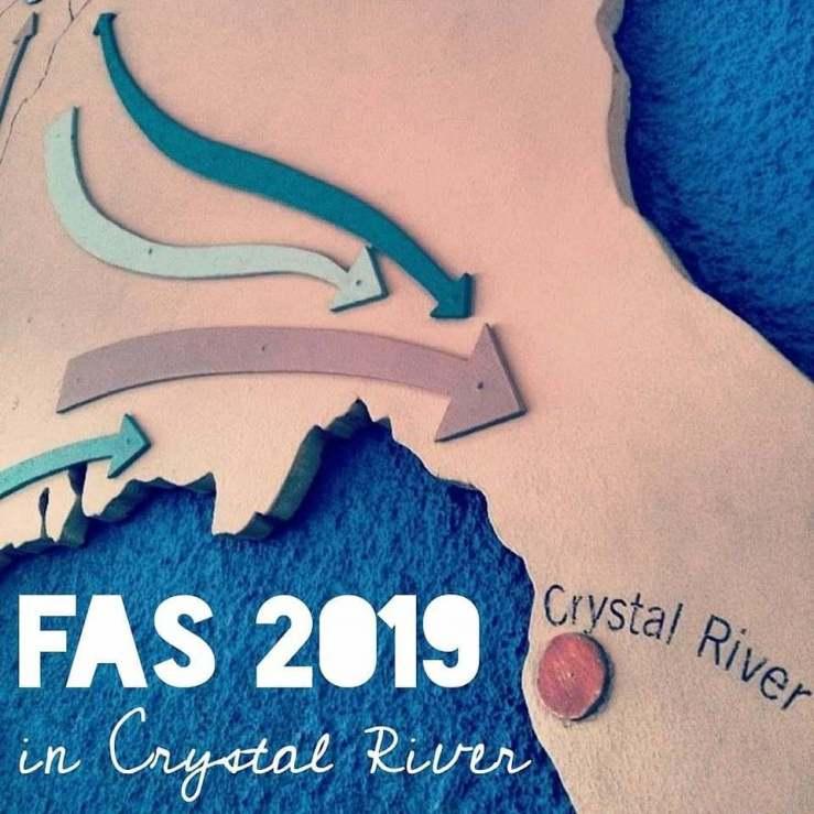 2019-FAS-conference-teaser-image-1